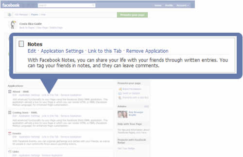 Editing Applications on a Facebook Business Page